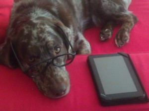Figure 1. Pablo prefers an audio book over the e-Reader.